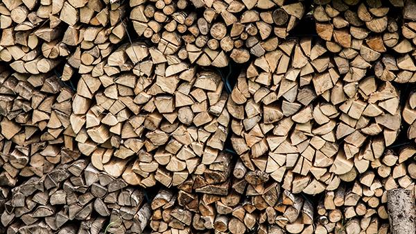había troncos hermosamente apilados