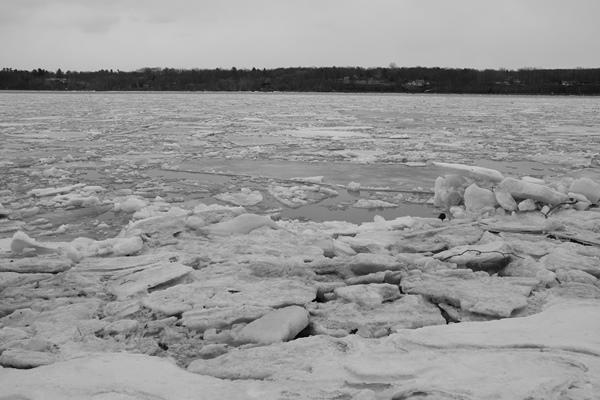 Pues nada, cruzamos por los hielos o vamos al puente?